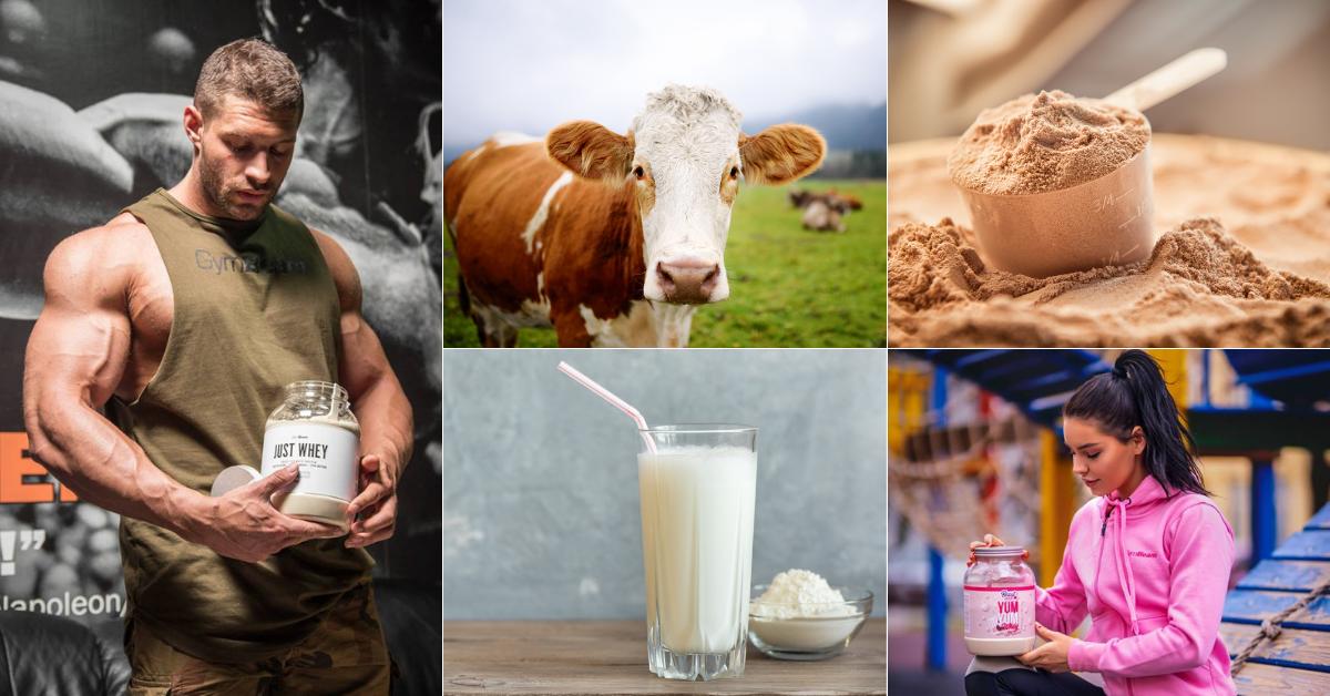 Care este diferența dintre cazeina și proteina din zer?